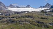 Buzul dil — Stok fotoğraf