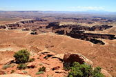 Canyonlands: crater of stone monuments and pillars — Stock Photo