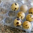 Quail eggs on egg box — Stock Photo