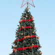 Christmas tree with blue sky - Stock Photo