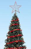 Christmas tree with blue sky — Photo