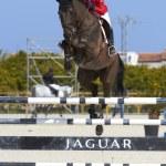 Mediterranean Equestrian Tour — Stock Photo #10177591
