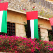 uae flags — Stock Photo