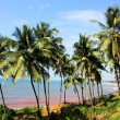 Stock Photo: Candolim beach, Goa, India