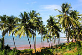 Candolim beach, Goa, India — Stock Photo
