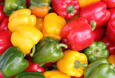 Red, Yellow and Green Peppers — Stock Photo