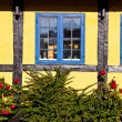 Stock Photo: Blue window in yellow house