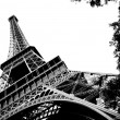 Eiffel Tower Black and White — Stock Photo #10060586