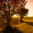Rural landscape of the Veneto, Italy — Stock Photo