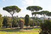 Landscape of Roman Forum — Stock Photo