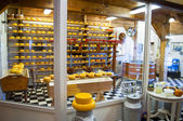 Cheese factory — Stock Photo