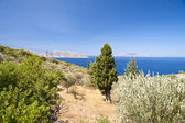 Aegean in Samos — Stock Photo