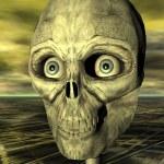 Skull — Stock Photo #10093763
