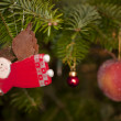 Christmas decoration — Stock Photo #10099108