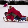 Sledding - Stock Photo
