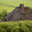 Thatched roof — Stock Photo #10122583