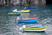 Fishing boats on madeira — Stock Photo