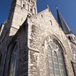 Cathedral in ghent — Stock Photo #10153089