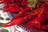 Crayfishes — Stock Photo