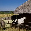 Thatched roof — Stock Photo #10163387