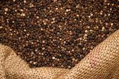 Spice — Stock Photo