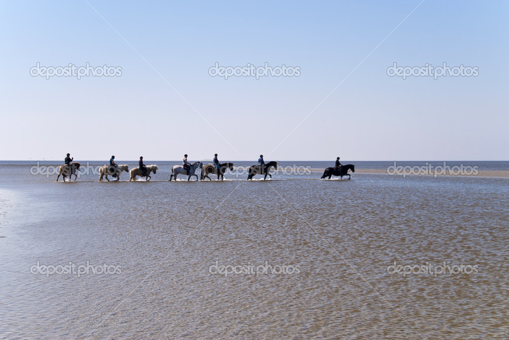 Beach of St. Peter-Ording, Germany — Stock Photo #10162456