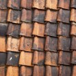 Roof Tiles — Stock Photo #10171207