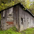 Shed in Harz Mountains, Germany - Lizenzfreies Foto