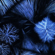 Microcrystals - Stockfoto