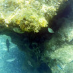 Underwater — Stock Photo #10178685