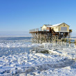 Beach of St. Peter-Ording in winter — Stock Photo