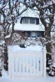 Toit couvert de chaume de neige — Photo