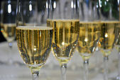 Glasses with champagne. macro — Stock Photo