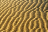 Sand dune ripples — Stock Photo