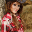 Royalty-Free Stock Photo: Beautiful cowgirl. Shot in the stable