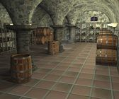 Cellar — Stock Photo