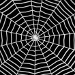 Spiderweb — Stock Photo #10081567
