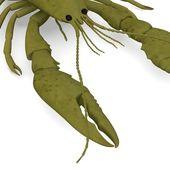 3d render of crustacean animal — Stock Photo