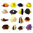 Stock Photo: 3d render of tropical fishes