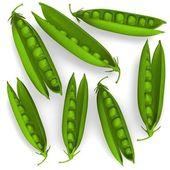 3d render of peas vegatable — Stock Photo
