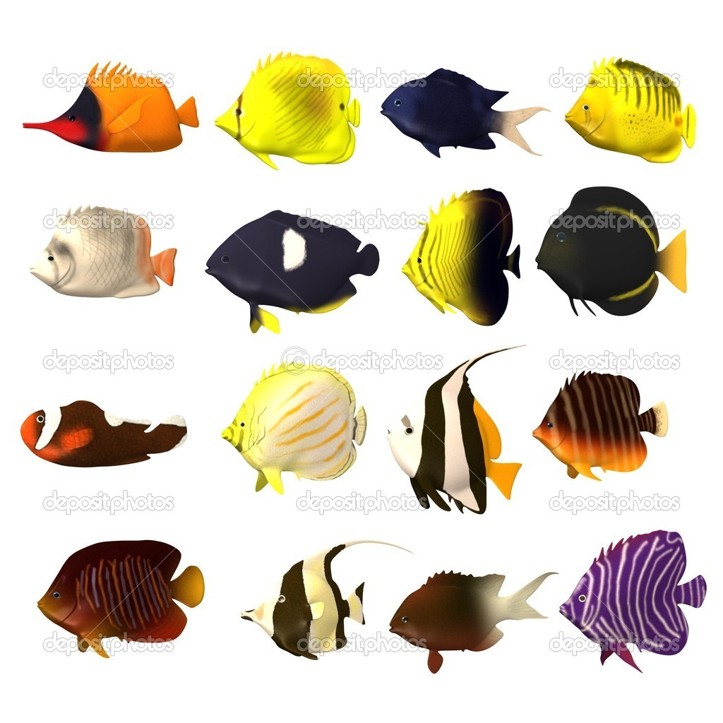 Render 3d de peces tropicales foto de stock for Peces tropicales