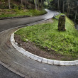 Stock Photo: Winding roadway in Baden, Germany.