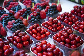 Mini Cherries — Stock Photo