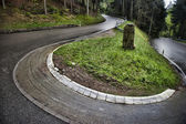 Winding roadway in Baden, Germany. — Stock Photo