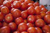 Bright Tomatoes — Stock Photo