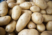 Bunch of Potatoes — Stock Photo
