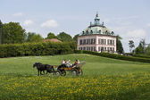 Carriage and Pink Castle — Stock Photo