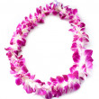Hawaiian lei made of  orchid blooms - Stock Photo