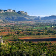 Stock Photo: Vinales, Cuba