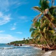 Caribbean Beach Panama — Stock Photo
